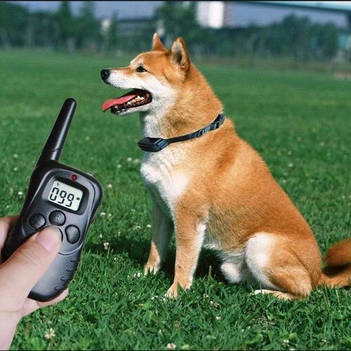 collar de entrenamiento perro poder ajustable doble canal